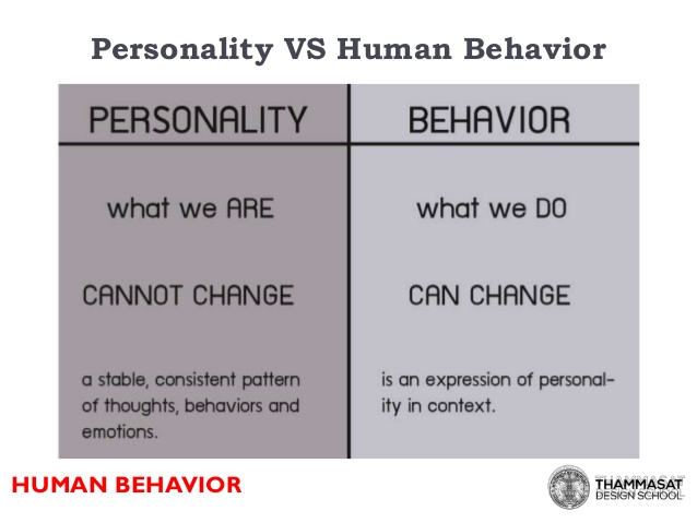 Personality vs. Behavior? What Everything DiSC Says About Your Temperament